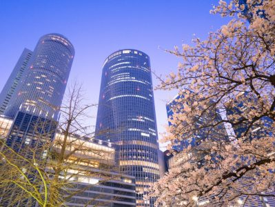 Cherry blossoms spring in Tokyo