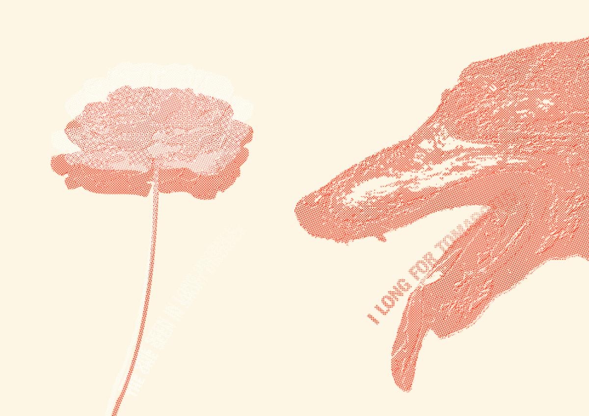 Dog & Flower / 2011 | Poster