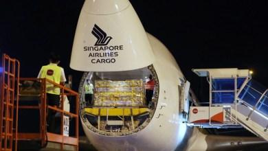 Photo of Singapur Kargo ilk aşıları taşıdı