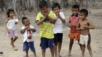 Photo of Desnutrición la otra pandemia