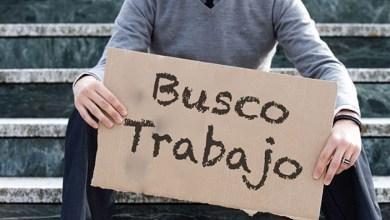 Photo of Desempleo en Ibagué llegó al 37,6%, más de 80 mil personas están si trabajo