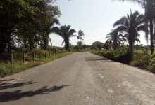 Photo of Una solución para las vías rurales del Tolima