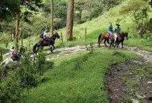Photo of Así son la «Experiencias de Turismo Rural» en el Tolima