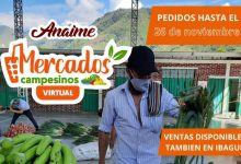 Photo of Anaime busca hacer historia con su Mercado Campesino Virtual