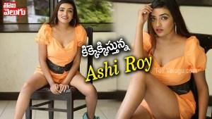 Ashi Roy Latest Glamorous Photos Download