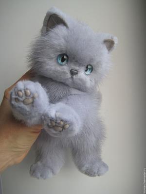 Rovnako ako mačička i kocúr je ovládaný hormónmi a proti ich sile je bezmocný.