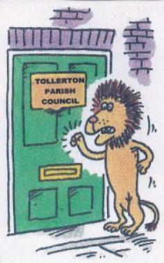 lion1b