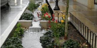 Jardines de lluvia