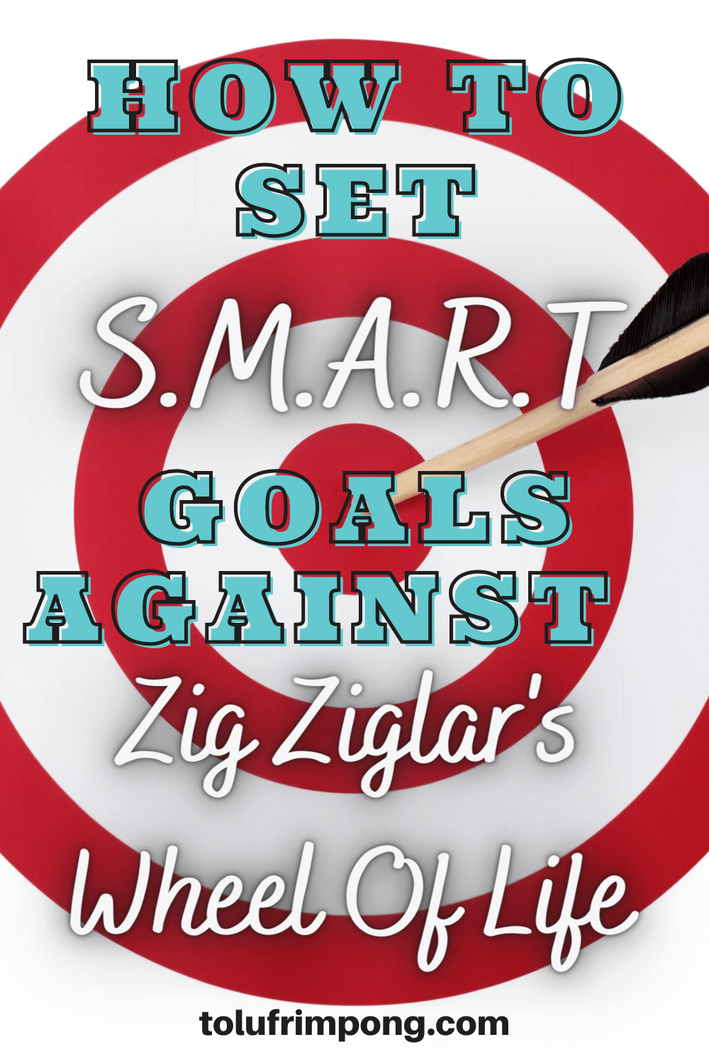 How I Set SMART Goals For 2020 Against Zig Ziglar's Wheel Of Life