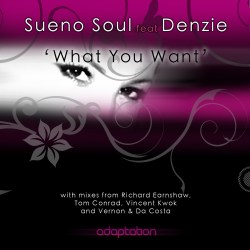 Sueno Soul feat. Denzie 'What You Want' (Tom Conrad Dub) [2009]