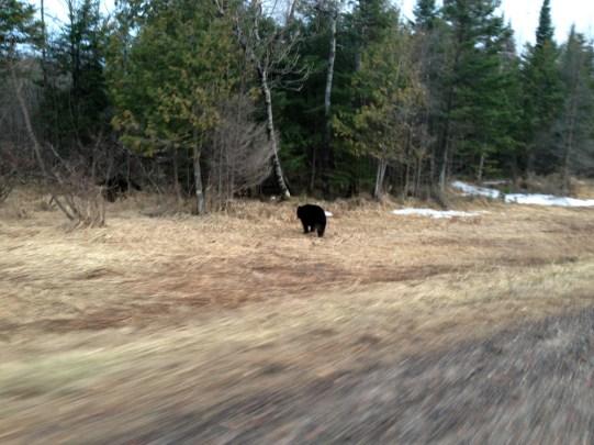 Taken alongside Highway 70 just west of Fifield, Wisconsin.