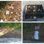 lixo 456789
