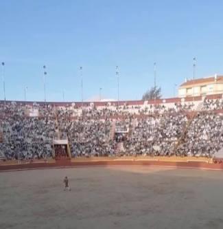 tourada corrida touros santarém 486581_7291151155812000775_n