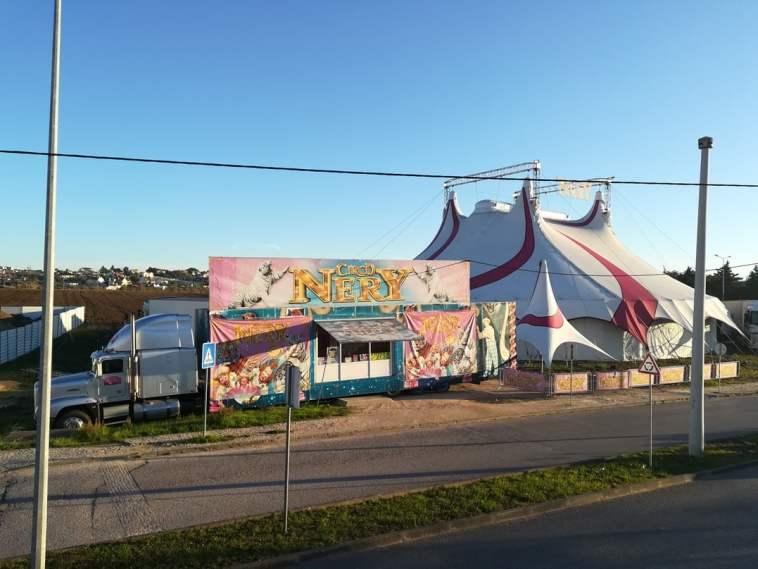 circo IMG 20201121 081116