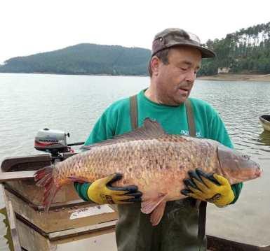pesca peixe 812_01744462o