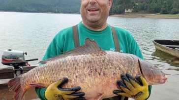 pesca peixe a 812 017444626 o