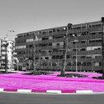 La vía en rosa