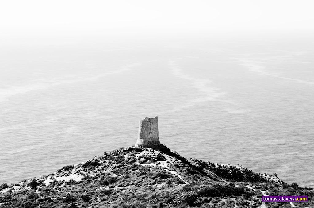 torre-reixes-campello-I