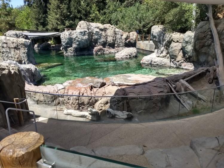 Sea lion cove exhibit at Fresno Chaffee Zoo