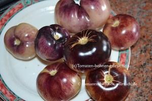 Great White Purple, dicke lila-gelb-schwarze Tomate
