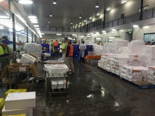 Melbourne-wholesale-fish-market-01