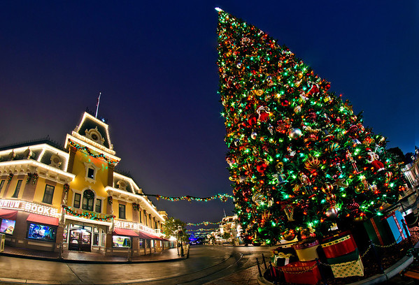 Disneyland ResortDisneyland (park)Main Street, USAThe Disneyland Christmas  Tree Towers Over The Emporium