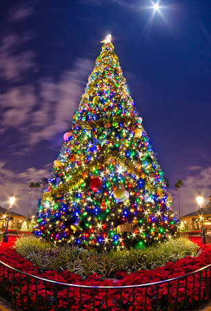 Epcot's Christmas tree isn't quite the same without the Lights of Winter flanking it, but it's beautiful nonetheless! For more on Christmas at Walt Disney World: https://www.disneytouristblog.com/disney-world-christmas-ultimate-guide/