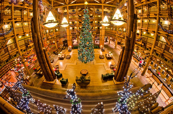 Reindeer in the lobby of Wilderness Lodge! What's next...mice?!