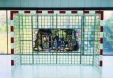 Stained Glass Goal Net