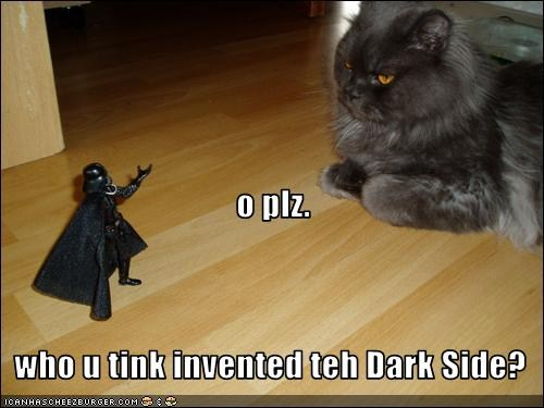 Dark Jedi Kitteh