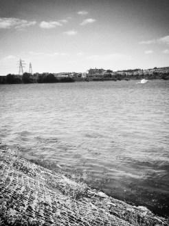 Plymouth Estuary 2