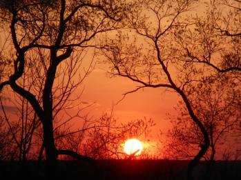 sunset 5-3-15