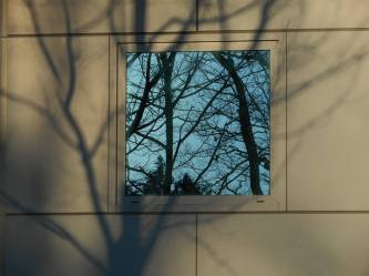 picture-window-shadows-and-reflections-outside-in