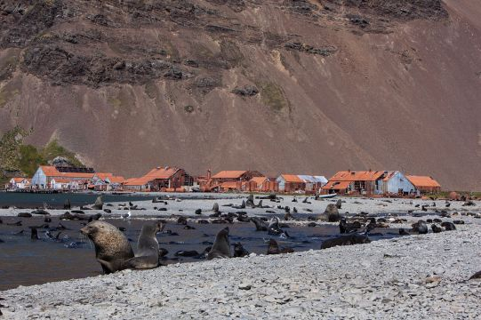 Stromness Whaling Station, South Georgia