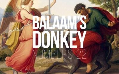 Balaam's Donkey – Numbers 22