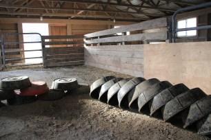 Iowa Barn pre-Pig Feed