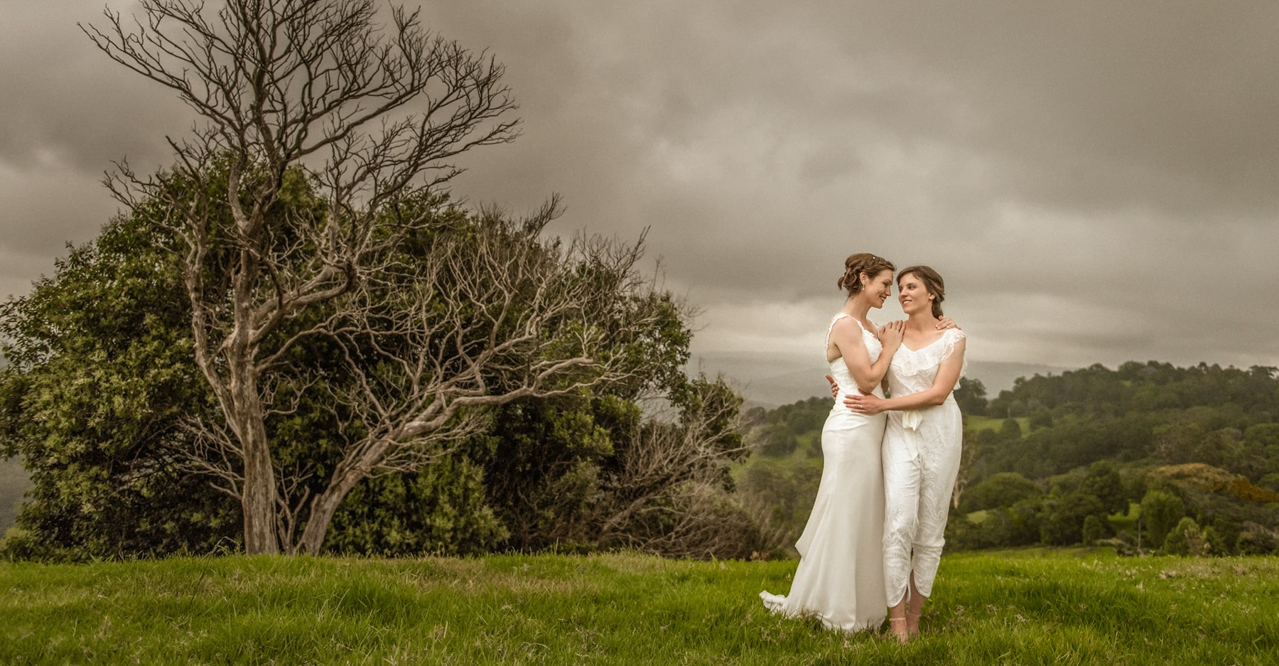Home  Brisbane Wedding Photographer  Tom Hall Photography