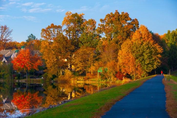 Lake Newport - Reston, Virginia