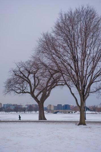 Looking across the frozen Potomac to Pentagon City