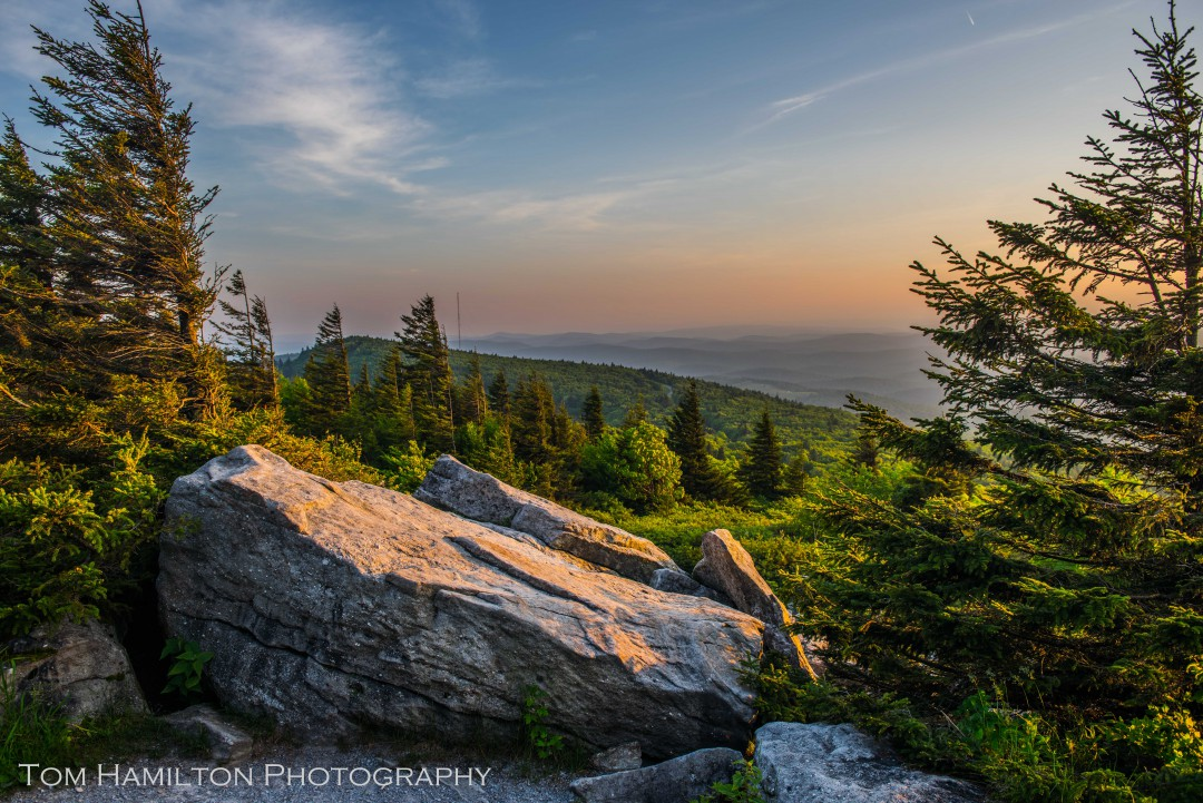 Spruse Knob - Highest Point in the Mountain State - Monongahela National Forest
