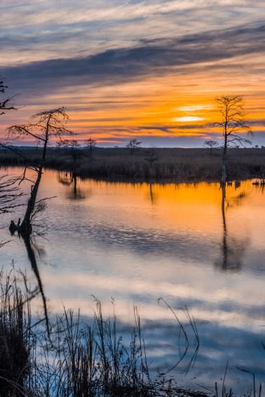 North Landing River Preserve, Virginia Beach