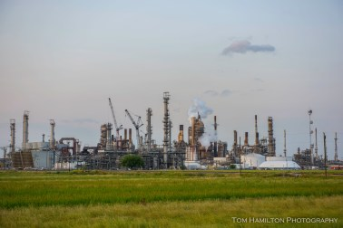 "Oil refineries and other ""industrial plantations"" have replaced traditional plantations as the main ""cash cows"" in the area. Louisianans are fortunate to have well paying job opportunities that don't require a college education."