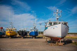 Fishing boats in Cheticamp Harbour beign stored for the winter season