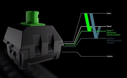 Razer Green activation