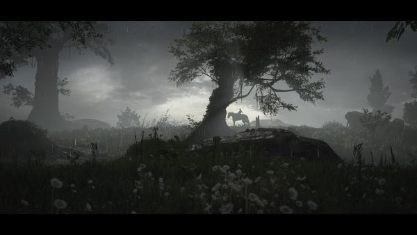 Shadow of the colossus PS4 Pro
