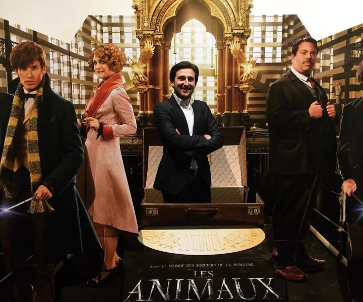 Les Animaux Fantastiques Lille - Tom Le Magicien