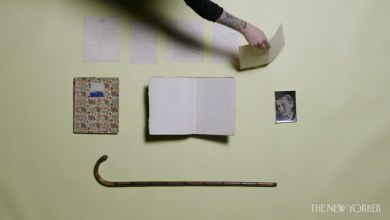 Photo of Yet Another Reason to Visit the New York Public Library: Authors' Locks of Hair?