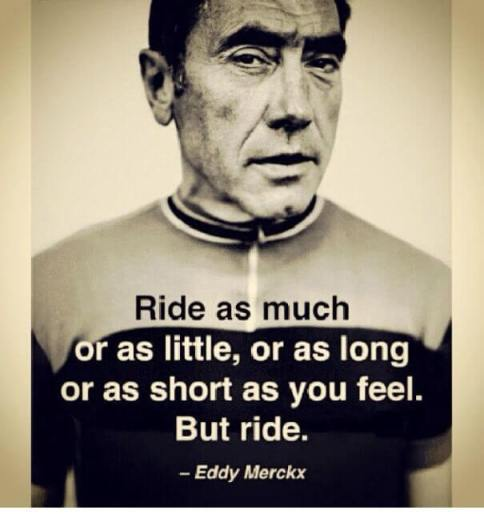 ride as much eddie merckx
