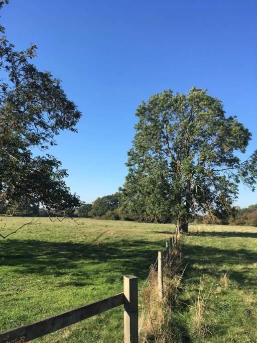 Cambridgeshire Oct10