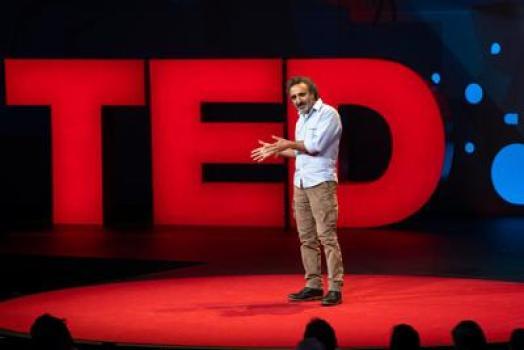 HAMDI TED
